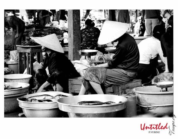 Nhiếp ảnh Gia Phan Vũ Bình